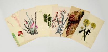 Benczúr jelzéssel: Virágok ( 6db). Akvarell, papír, 29×20 cm