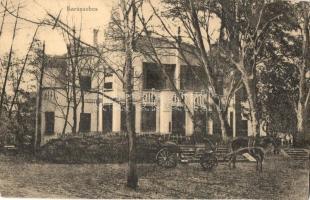 Karánsebes, Caransebes; Füzfás szálló, Johann Balc kiadása / hotel (EK)