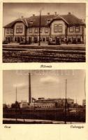 Ercsi, Cukorgyár, vasútállomás