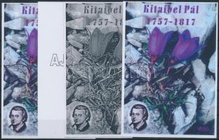 2007/48 Kitaibel Pál 4 db-os emlékív garnitúra (28.000)