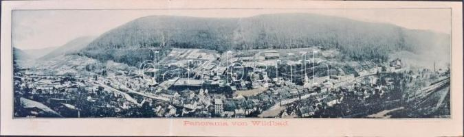 Wildbad im Schwarzwald; big-sized 3-tiled folding panoramacard, H. Reisser, Wilh. Rath (EB)