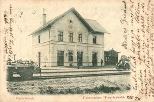 Tenke, Tinca; Vasútállomás. Kiadó Lővy Dávid / railway station