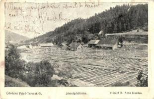 Felsőturcsek (Turcsek), Horny Turcek; József gőzfűrész, Herchl R. Anna kiadása / saw mill (b)