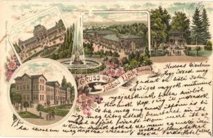 1899 Lipik, Jodbad; Curhotel, Cursalon, Wandelbahn, Jodquelle. Ottmar Zieher floral litho (EK)