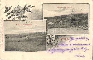 Szada, Kilátás a Várdombról. floral Divald