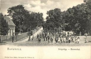 Budakeszi, Virágvölgy (Blumenthal). kiadja Stern Jakab