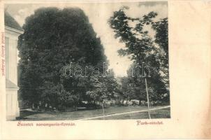 Szántó, Santovka; Savanyúvíz forrás, park. Divald Károly / park (ázott / wet damage)