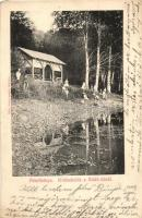 Felsőbánya, Baia Sprie; Kirándulók a Bódi-tónál. Szabó Károly kiadása / hikers at the lake