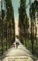 Érsekújvár, Nové Zamky; vasúti fasor, biciklis, K. J. Bp. kiadása / railway promenade, cyclist, Érsekújvár visszatért 1938 So. Stpl. (EK)