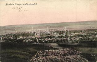 Pankota, Pancota; Látkép, kiadja Beamter Ödön / general view