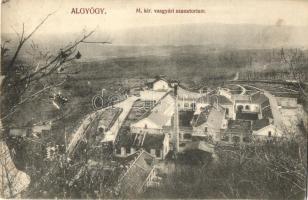 Algyógy, Geoagiu; M. kir. vasgyári szanatórium, Adler kiadása / Iron factory sanatorium