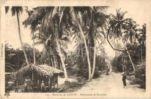 Saigon, Ho Chi Minh City; Habitations et Cocotiers / houses and coconut trees (EK)
