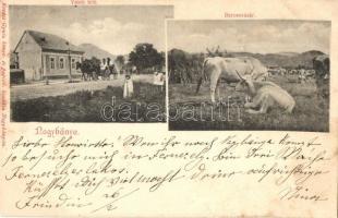 Nagybánya, Baia Mare; Vasút felé, baromvásár, kiadja Kovács Gyula / street view, cattle fair