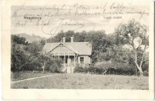 Nagybánya, Baia Mare; Liget, Kosutány villa / park, villa (EK)