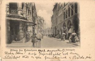 Copenhagen, Kobenhavn; Ostergrade, Svane Apothek / street view, pharmacy (EK)