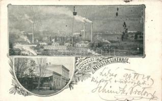 1899 Nyustya-Likér, Hnústa-Likier; vasgyár, vasútállomás / iron works, railway station, floral