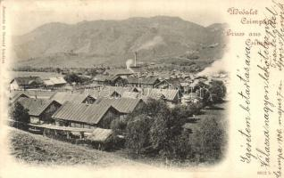 Csimpa, Cimpa; látkép, fűrészgyár, Joanovits és Sternád kiadása / general view, saw factory (EK)
