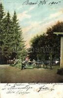 Brassó, Kronstadt, Brasov; Noa park / park (fl)