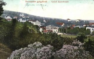 Savanyúkút, Sauerbrunn;