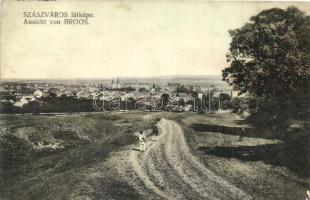 Szászváros, Broos, Orastie; Látkép / general view (EK)