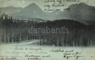 Tátra, Csorba-tó környéki fenyvesek. Schmidt Edgar / pine wood at the lake