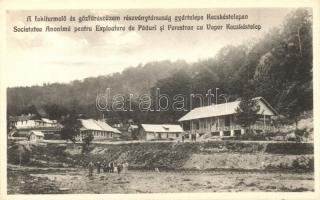 Kecskéstelep (Sósmező); Fakitermelő és gőzfűrészüzem részvénytársaság gyártelepe, Csángó György kiadása / saw mill
