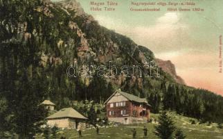 Tátra, Magas Tátra, Vysoké Tatry; Nagytarpataki-völgy, Zerge szálloda, Franz Pietschmann Kunstverlag / valley, hotel (EB)