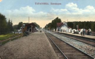Tarasovka, Platform, railway station (kis szakadás / small tear)