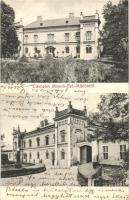 Mosonszentmiklós, Gróf Wenckheim kastély, Friedery Albert fényképész kiadása (EK)