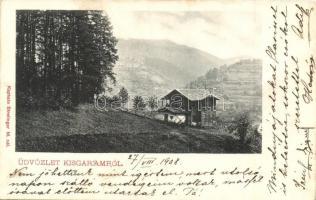 Kisgaram, Hronec; látkép, Sterlinger M. kiadása / general view (fa)