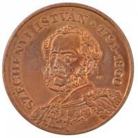 Lebó Ferenc (1960-) 1991. Széchenyi István A Pest-Budai Malomipar Alapítójának Emlékére fém emlékérem (42,5mm) T:2