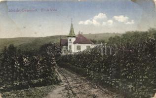 Gyorok, Ghioroc; Frick Villa, Butar kiadása / villa (ázott / wet damage)