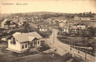 Truskavets, Truskawiec; general view (ázott / wet damage)