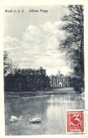 Lajtabruck, Bruck an der Leitha; Prugg kastély park / castle, TCV card