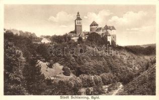 Városszalónak, Schlaining; vár / castle