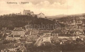 Segesvár, Schässburg, Sighisoara; Látkép, kiadja W. Nagy / general view
