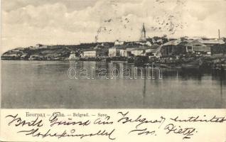 Belgrade, Save