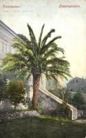 9 db RÉGI horvát városképes lap; Lussingrande és Lussinpiccolo, vegyes minőség / 9 pre-1945 Croatian town-view postcards; Mali Losinj and Veli Losinj