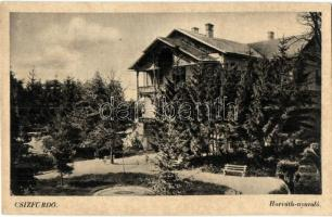 Csizfürdő, Ciz kupele; Horváth nyaraló / villa