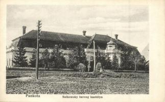Pankota, Pancota; Sulkowski herceg kastélya / castle