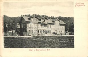 Gräfenroda, Gast- und Logirhaus zum Ried / hotel