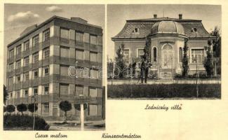 Kunszentmárton, Cseuz malom, Ledniczky Villa