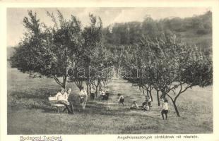 Budapest XII. Zugliget, Angolkisasszonyok zárdája, rét