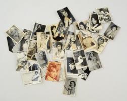 cca 1960 Vegyes színész fotók, 37 db (Gina Lollobrigida, Sophia Loren, Claudia Cardinale, Alain Delon, Brigitte Bardot), különféle méretben, változó állapotban.