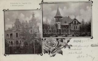 Siófok, Táhnhoffer és Ángyán villa a Balaton partján, floral. Schwarcz Bernát kiadása (EK)