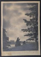 Franz Abony (?-?): Tájkép. Rézkarc, papír, jelzett, 30×22 cm