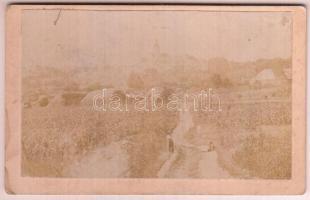 cca 1880 Szászrégen, keményhátú fotó, 7x11 cm / Reghin, vintage photo, 7x11 cm
