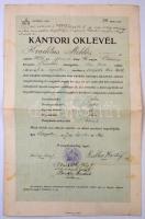 1917 Szeged, A tanítóképző intézet által kiállított kántori oklevél