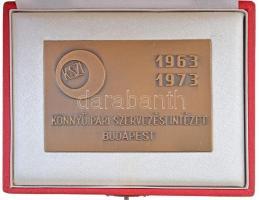 1973. Könnyüipari Szervezési Intézet Budapest 1963-1973 Br plakett eredeti dísztokban (61x91mm) T:1-