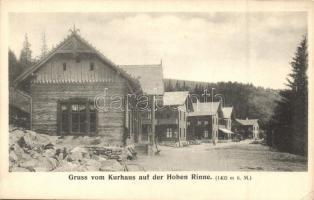 Szebenjuharos, Hohe Rinne, Paltinis; Kurhaus Tannhof auf der hohen Rinne / gyógyház a hegyen / spa, mountain (EK)